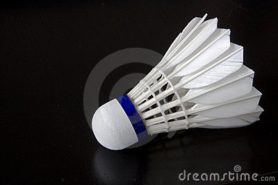 White Badminton Bird