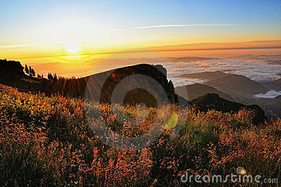Mountain Sunrise Landscape
