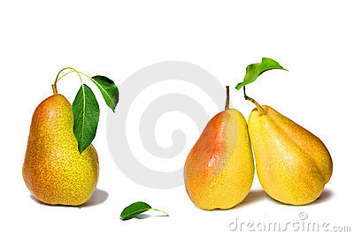 Pears collection