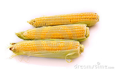 Three corns isolated on white