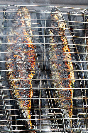 Mackerel On The Barbecue