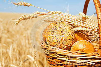 Basket with bread in a wheat field
