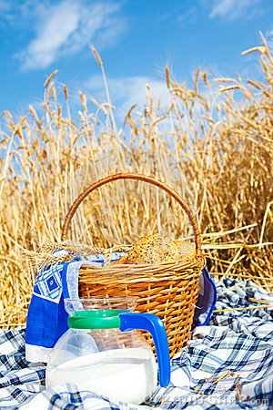 Bread and milk in a wheat field