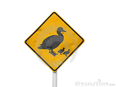 Ducks Crossing Sign