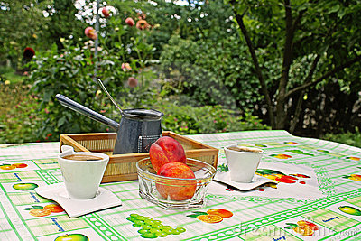 Picnic in countryside