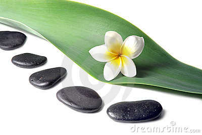 Lava Stones with frangipani flower on the Leaves