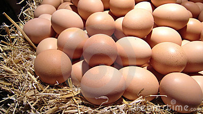 Pile of fresh eggs