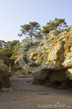 Typical exposed sedimentary sand stone cliff face on the Praia da Oura beach in Albuferia with Pine trees at the top