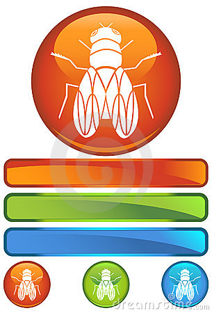 Orange Round Icon - Fly