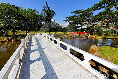 Bridge in Chinese Garden