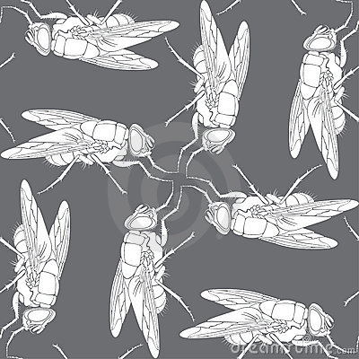 Background from fly