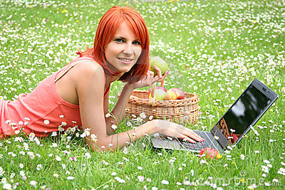 Picnic with laptop