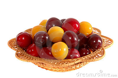 Wattled dish with plums