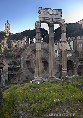 Forum of Julius Casesar Spring Flowers Rome Italy