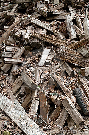 Scattered Woodpile of Pine Firewood