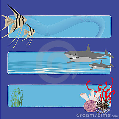 Fish banners 2 no text