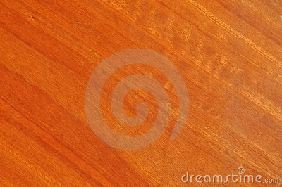 Wood grain of blue gum timber clear coated