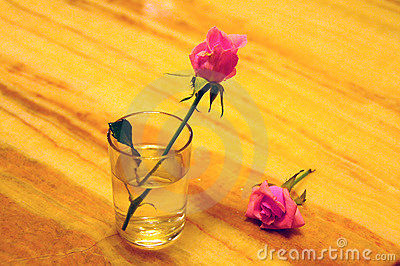 Glass and flower