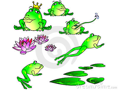 Frogs doing their stuff