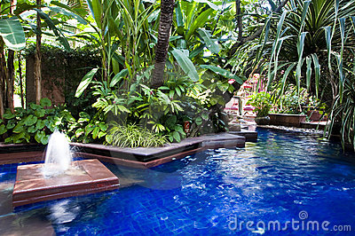 Tropical swimming pool