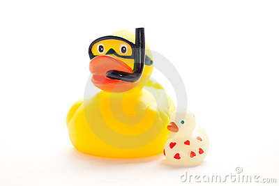 The Bath Duck