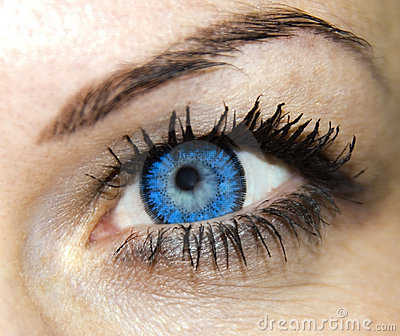 Beauty blue woman eye