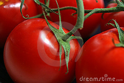 Ripe Red Tomatos