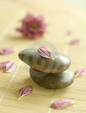 Stones and petals of flowers.