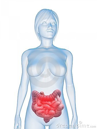 Inflamed intestines