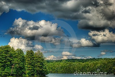 Lake, Trees and Sky in Summer