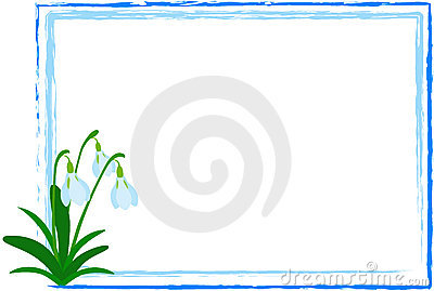 Snowdrop in Frame