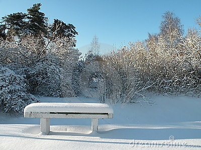 Bench in Winter time