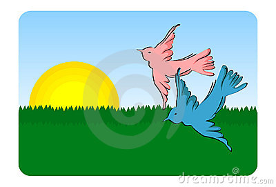 Birds flying - vector