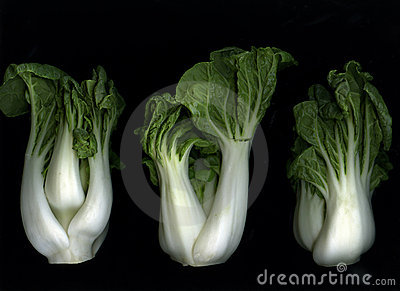 Bok Choy on Black