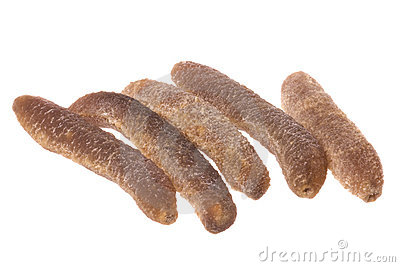 Dried Sea Cucumbers Isolated