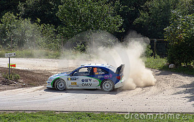 Pons WRC 2005 Germany