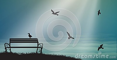 Empty bench with seagulls and sun rays, shadows, memories, sea sweet dreams,