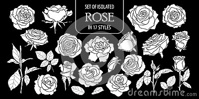 Set of isolated white silhouette rose in 17 styles .Cute hand drawn flower vector illustration in white plane and no outline.