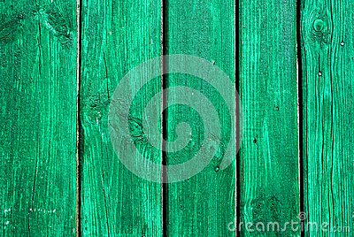 Green painted textural wooden old background