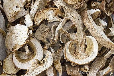 Dry mushrooms