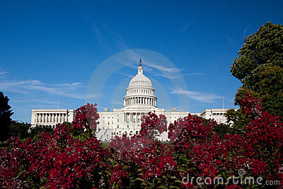 Capitol Building, Washington DC
