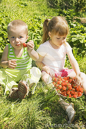 Child eating strawberries.