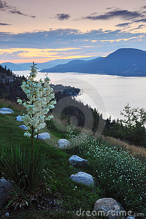 Okanagan lake at sunrise