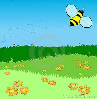 Bee flying over a green lawn