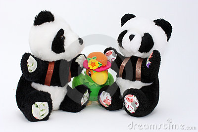 Two pandas and a parrot