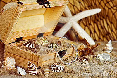 gold coins and seashells in wooden treasure chest