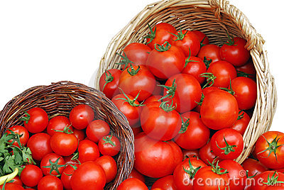 Basket with tomatoes