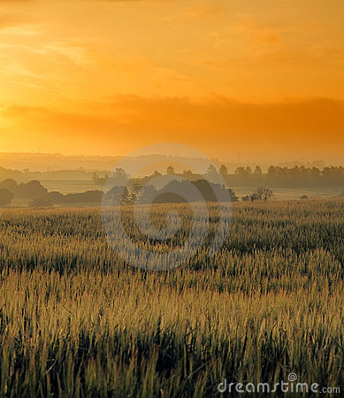 Sunrise at the countryside