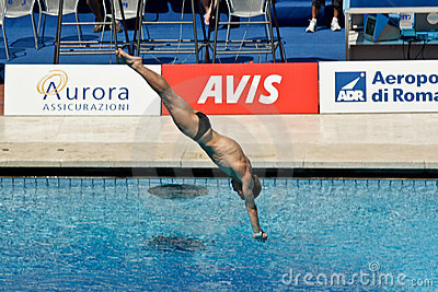 10m platform diving at the FINA World Championship