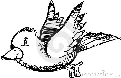 Sketchy Bird Vector Illustration